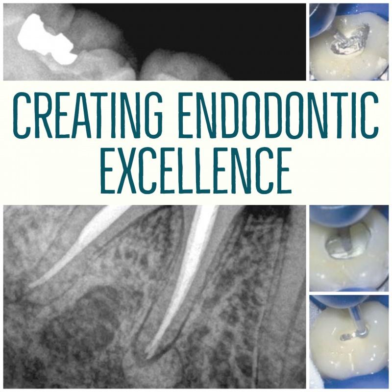 Endo excellence